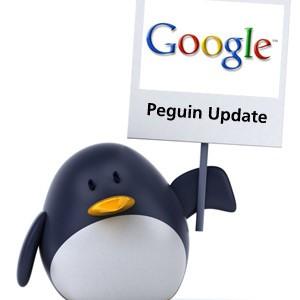 google Penguin Update Details